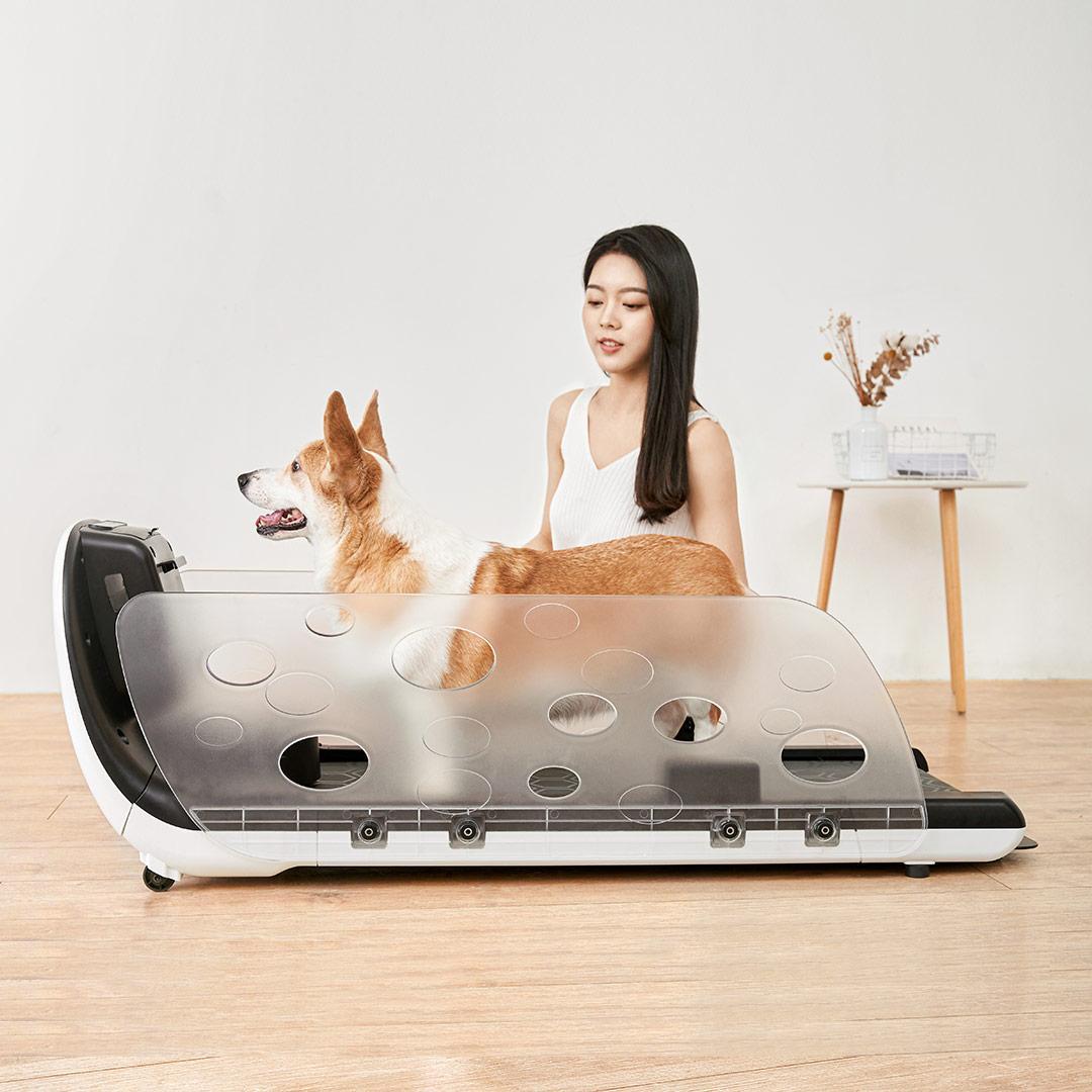 Cinta de correr de Yesoul Xiaomi, lo nuevo para mascotas en Youpin